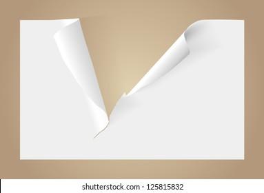 Teared blank paper