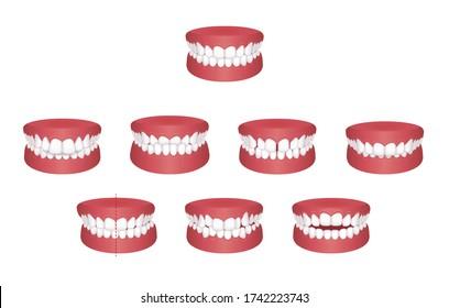 Teeth trouble ( bite type ) vector illustration set / no text