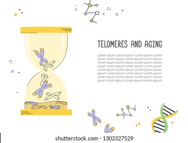 Telomeres and aging. Hour glass. Chromosome and DNA. Great for medical and educational articles and banners. Vector hand drawn illustration.