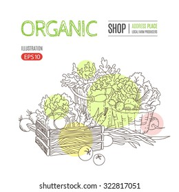 Template with autumn harvest, vegetables and herbs. Perfect design for farm market advertising, farming industry, bio product business. Business identity for bio products and agricultural industry.