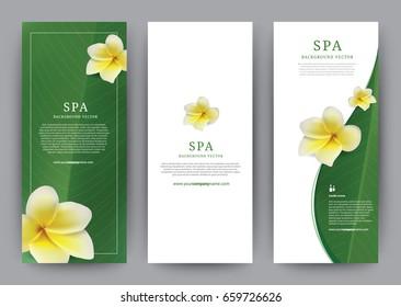 Template Banner Spa Frangipani flower, Green Leaf Modern design, brochure poster flyer leaflet, vector illustration