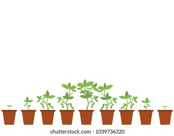 Template with a bottom border of a growing potted plant