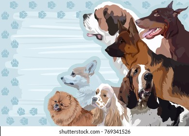 A template for a card, a calendar with a frame from the tracks and a dog St Bernard, American cocker spaniel, Basset hound, Pomeranian spitz, Pembroke welsh corgi, Doberman pinscher, German shepherd.