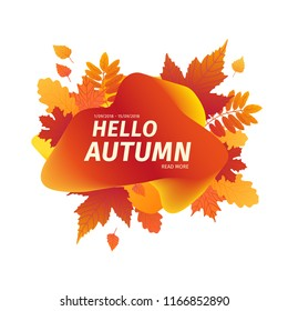 Template design autumn  banner with decor silhouette of plants. Badge of promotion Hello autumn. Trendy Layout with orange gradient for Fall season with leaves maple. Mesh background. Vector.