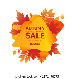 Template design discount banner for autumn season. Poster for special fall sale with orange flower, leaf decoration. Trandy Layout for autumnal offer on natural, floral background. Vector