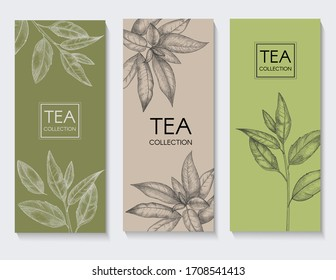 Template design with tea leaver on the green background