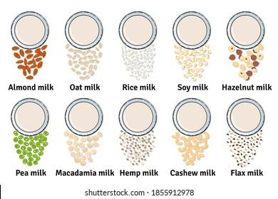 Template of glasses with plant-based milk. Vegan milk in glass. Top view. Almond, soy, rice, cashew, oat, pea, flax, walnut, hemp, hazelnut milk. Milk alternatives. Hand drawn vector illustration.
