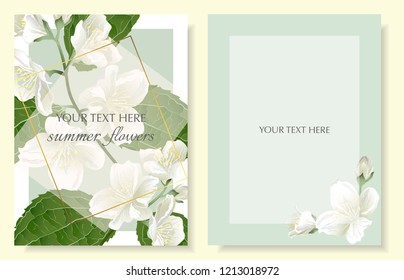 Template for greeting cards, wedding decorations, invitation, sales. Set of Vector banner with Luxurious jasmine flowers. Spring or summer design. Vintage style.
