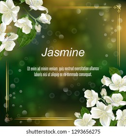 Template for greeting cards, wedding decorations, invitation, sales, packaging, cosmetics, perfume. Vector banner with Luxurious jasmine flowers. Space for text.