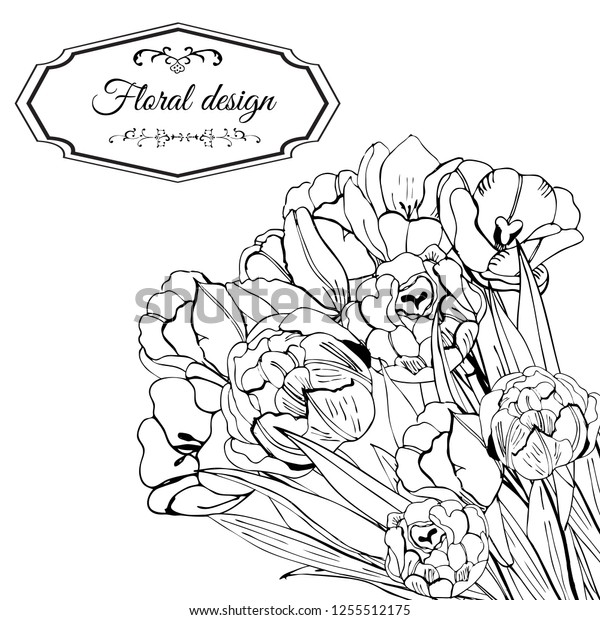Template for invitation or greeting card  of blossoming tulip flowers. Hand drawn monochrome sketch  on white background.Vector illustration.