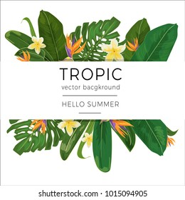 Template with tropic plants and flowers and place for text. Summer vector design.