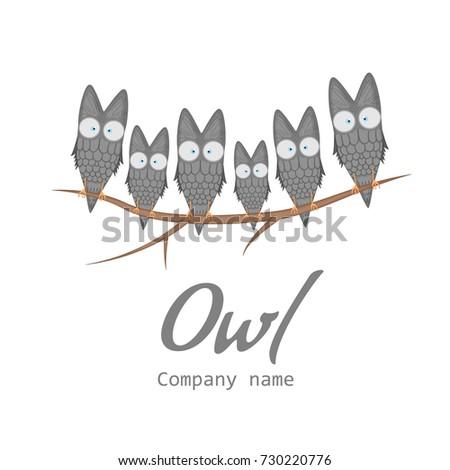 templates company logo owl banner cute stock vector royalty free