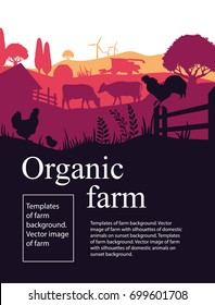 Templates of farm background. Vector image of farm with silhouettes of domestic animals on sunset background.