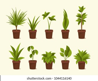 Ten Different Plants in Pots. Vector Set