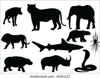 ten most dangerous animals vector