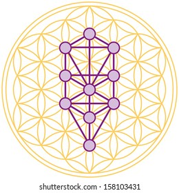 The ten Sephirots of the Kabbalah fits in the Flower of Life, a geometrical figure, composed of multiple evenly-spaced, overlapping circles forming a flower-like pattern with the symmetrical structure