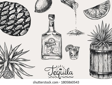 Tequila background. Glass bottle, shot with lime, blue agave Plant and barrel. Retro poster or banner. Engraved hand drawn vintage sketch. Woodcut style. Vector illustration.