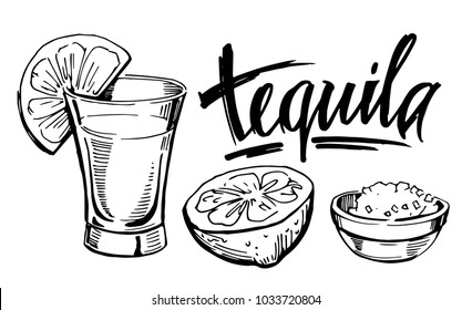 Tequila shot with lime. Hand drawn illustration converted to vector