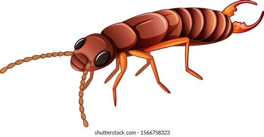 Termite on white background illustration