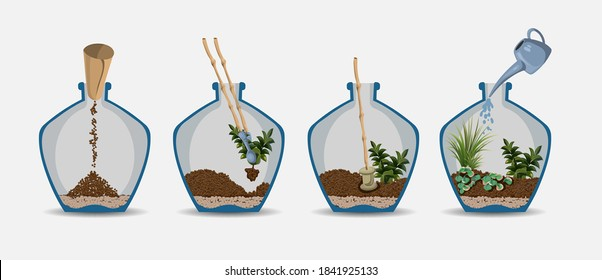 Terrarium Nature green plant in glass garden, plant on decoration natural botany vector cartoon illustration isolated on white. Process of growing a garden in a bottle. Succulent, tree, flower