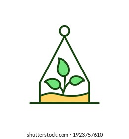 Terrarium RGB color icon. Plant in jar. Succulent growing. Florarium for house. Cactus in bottle for living space. Home interior decoration. Biophilic design. Isolated vector illustration