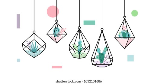 terrarium succulent cactus geometric hanging glass interior flower wedding plant vector cover image wallpaper background