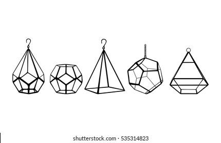 Terrariums set. Vector illustration, eps10. Five terrariums isolated on white background. Succulent plants terrariums.