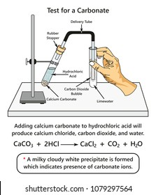 Test for a Carbonate infographic diagram showing a laboratory experiment indicates presence of carbonate ions when adding calcium carbonate to hydrochloric acid for chemistry science education