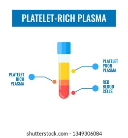 Test tube filled with blood after centrifuge for PRP injection procedures. Platelet-rich plasma laboratory equipment. Regenerative medicine concept. Vector illustration on white background.