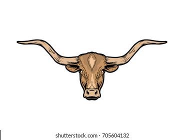 Texas Bull Longhorn Illustration easy to edit