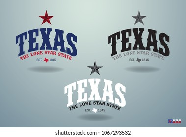 Texas the lone star state with mini map, vector eps 10.