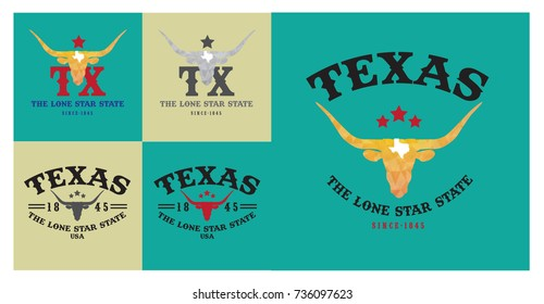 Texas and  longhorn with nickname-The Lone Star State collection.
