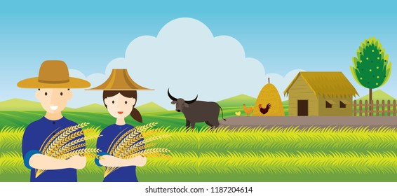 Thai Farmer with Rice and Paddy Field Background, Thailand Occupation and Countryside Scene
