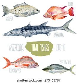 Thai fishes. Vector watercolor illustration.