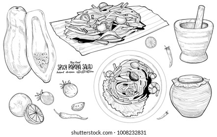 Thai Food. Hand Drawn Illustration. Spicy Papaya Salad