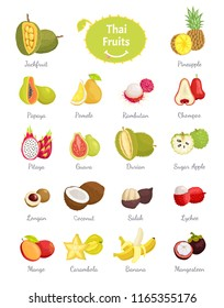 Thai fruits set of lush food vector. Longan and sugar apple, salak and coconut, citron and carambola. Chompoo and pomelo, papaya and pineapple durian