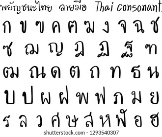 Thai hand drawn consonants.Thai characters.