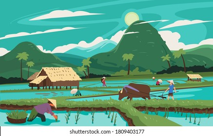 Thailand. Rice terraces agricultural sceneries. Rice fields with asian farmers. Vector illustration. People planting and grow rice in rainy season.