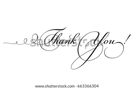 Thank You Card Vector Calligraphy Swirl Stock Vector Royalty Free