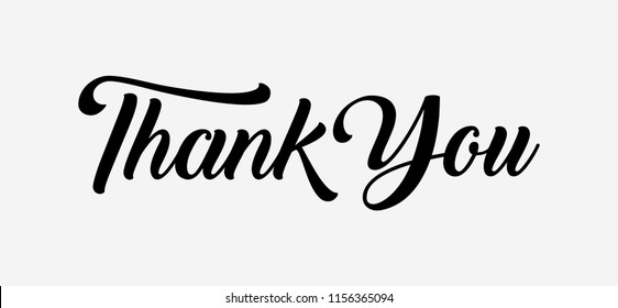 Thank you Hand drawn lettering. Calligraphic Lettering, Vector illustration