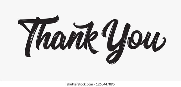 Thank you Hand drawn lettering. Calligraphic Lettering, Modern Calligraphy for Thank You text on white background. Vector illustration.