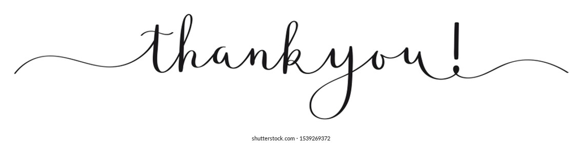 THANK YOU! vector brush calligraphy banner with swashes
