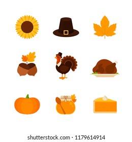 Thanksgiving - Flat Icon Set - Sunflower, Pilgrim Hat, Fall Leaf, Nut, Turkey, Pumpkin, Honey Jar and Pie Isolated on a White Background