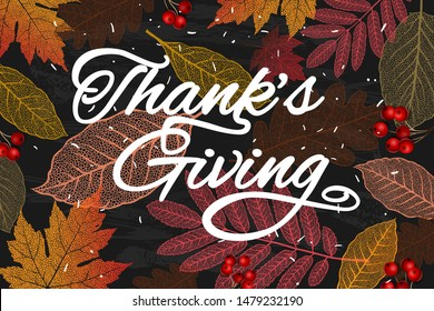 Thanksgiving holiday banner with congratulation text. Autumn tree leaves on chalkboard background. Autumnal design for fall season poster, thanksgiving greeting card, vector illustration