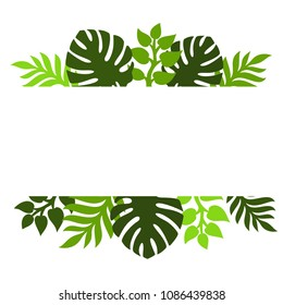 Theme of plants. Silhouettes of tropical palm leaves, monstera, jungle leaves and a white square for text. Vector illustration.
