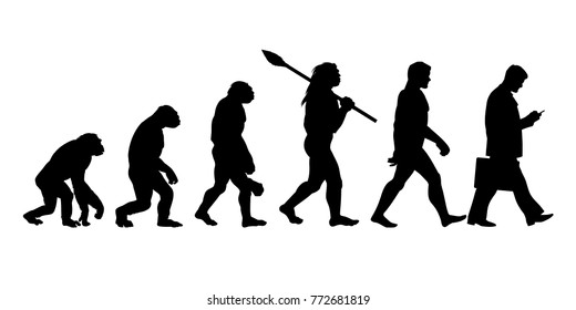 Image result for pictures of evolution