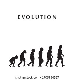 theory of evolution, vector illustration, for background, white background