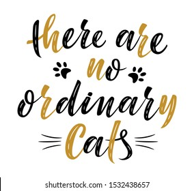 there are no ordinary cats handwritten sign. Modern brush lettering. Slogan about cat. Cat lover. Vector isolated illustration