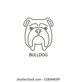 Thin line design logotype. Vector image of dog head on white background. Cute dog, face of english bulldog.