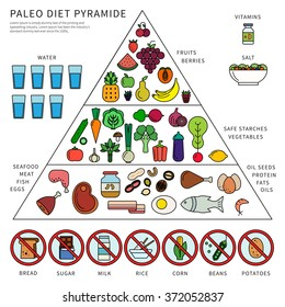 Thin line flat design of the pyramid of paleo diet. Healthy eating consept, icons of products in three levels, fats, oils, seafood, meat, water, vegetables and fruits